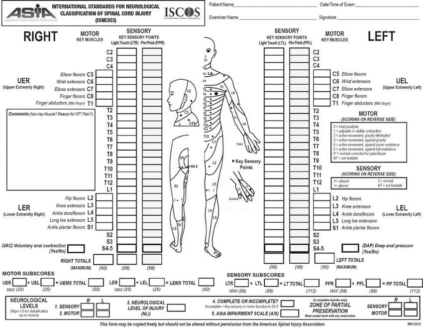 Scoring sheet for the International Standards for