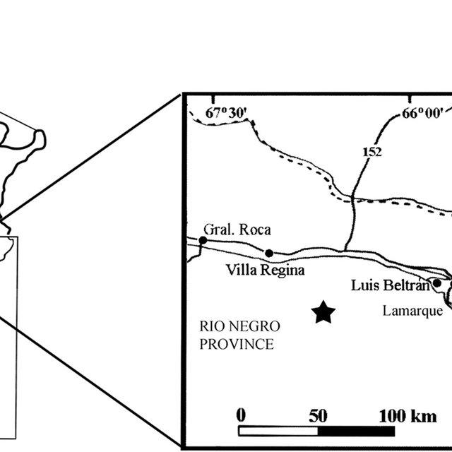 Wiring Diagram Kium Rio 2010 : 2005 Kium Rio Electrical
