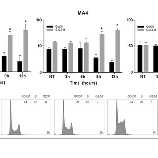 Analysis of DSB repair by neutral comet assay. A. WT, MA4