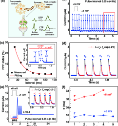 stp and ltp behaviors emulated in cu annealed zns pt memristive synapses a [ 850 x 942 Pixel ]