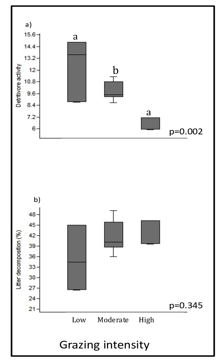 medium resolution of differences on a detritivore activity and average b litter decomposition between grazing intensity treatments