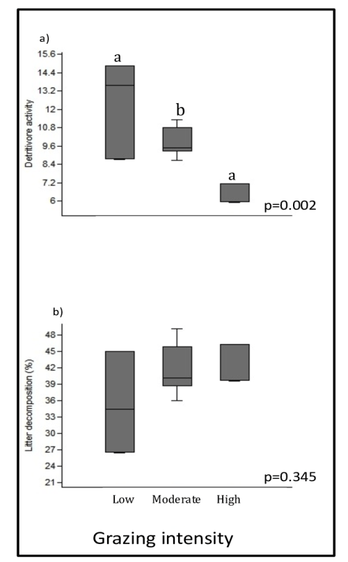 small resolution of differences on a detritivore activity and average b litter decomposition between grazing intensity treatments