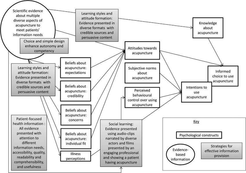 Simplified logic model illustrating how effective evidence