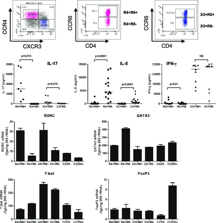 The chemokine receptors CCR4, CXCR3, and CCR6 identify CD4
