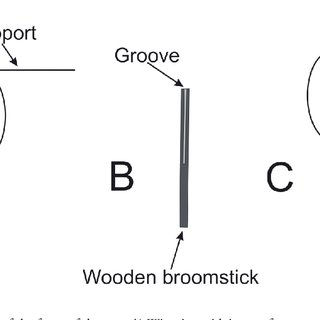 Schematic view of the trap trigger system. A) Spring