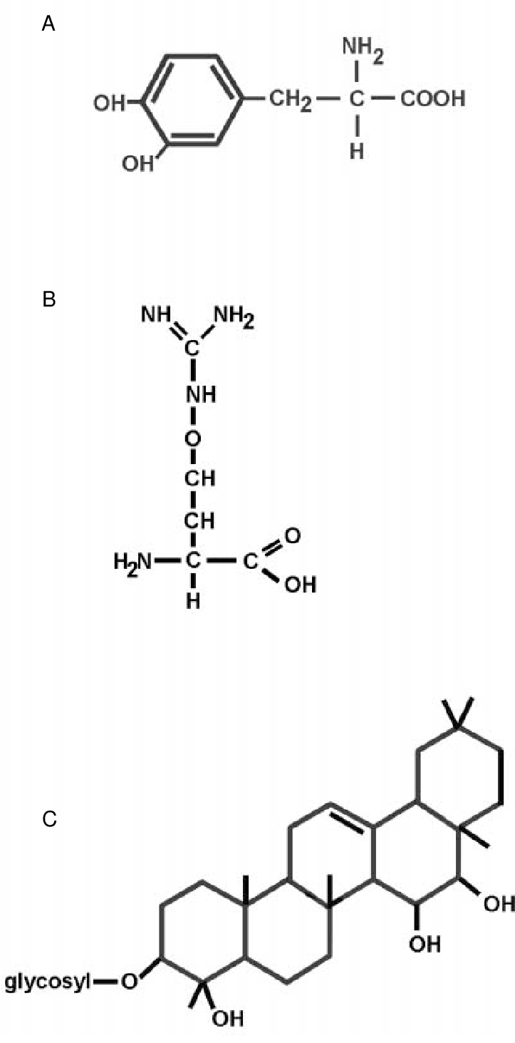 hight resolution of structures and functions of selected alkaloids terpenoids and amino acids isolated from legume seeds and
