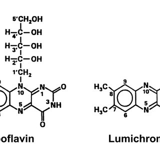 HPLC plate showing runs of lumichrome and riboflavin in