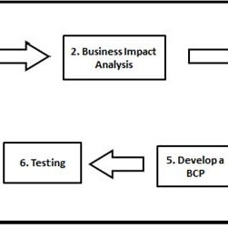 (PDF) A Normative Process Model for ICT Business