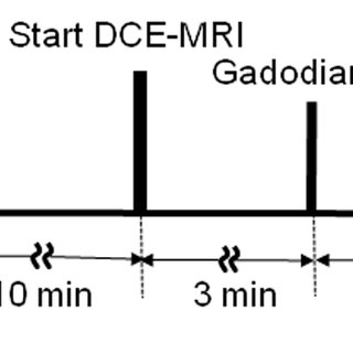 Time series of axial DCE-MRI for FUS-induced BBB-D in