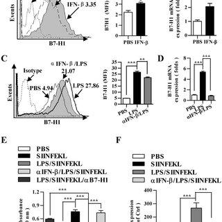 (PDF) Increased Antigen Presentation but Impaired T Cells