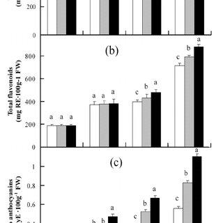 Effect of 5-aminolevulinic acid (ALA) treatment at 0