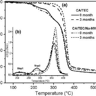 TGA and DSC data of CA and its CA-based nanobiocomposite