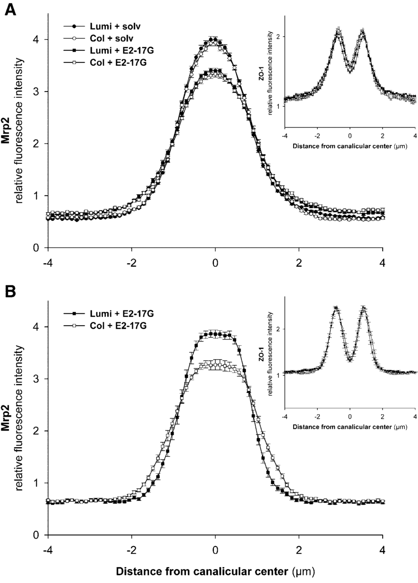 hight resolution of immunofluorescent intensity analysis of fluorescence profiles ofimmunofluorescent intensity analysis of fluorescence profiles of mrp2 download scientific