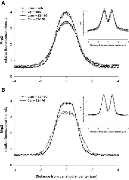 small resolution of immunofluorescent intensity analysis of fluorescence profiles ofimmunofluorescent intensity analysis of fluorescence profiles of mrp2 download scientific