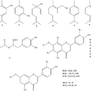 (PDF) Thymus Plants: A Review—Micropropagation, Molecular