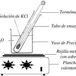 (PDF) Manual de Prácticas de Laboratorio para Química I