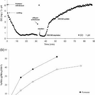 (PDF) Polyhydroxyalkanoate (PHA) production from sludge