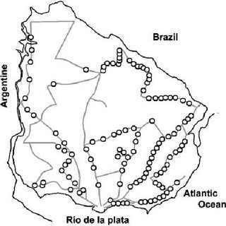 (PDF) Ecology and behaviour of the 'road tarantulas