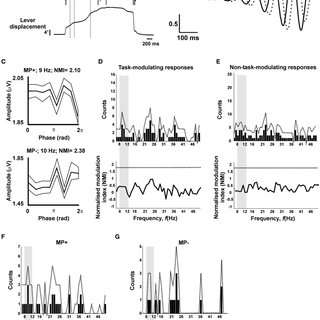 (PDF) Pre-Synaptic Inhibition of Afferent Feedback in the