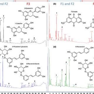 (PDF) Evidence for biological denitrification inhibition