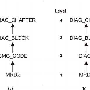 An example of a domain generalization hierarchy for the