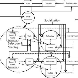 (PDF) Future directions in personality, occupational and