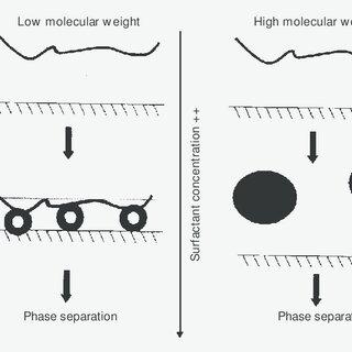 Schematic representation of DNA-cetyltrimethylammonium