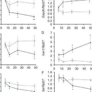 (PDF) Hyperglycemia represses Connexin36 in pancreatic