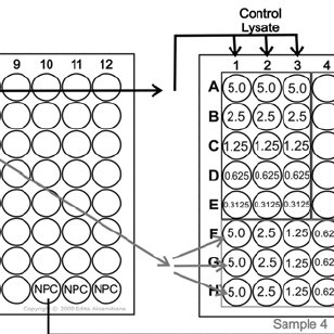 Example of a 96-well plate for TPA with input amount per