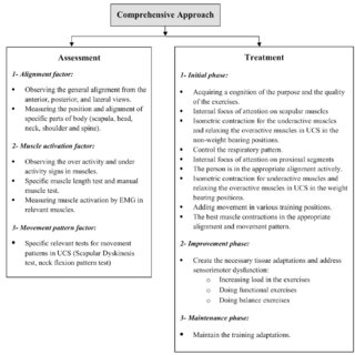 (PDF) The effectiveness of a comprehensive corrective exercises program and subsequent detraining on alignment. muscle activation. and movement ...