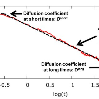 (PDF) Brownian Dynamics Computational Model of Protein