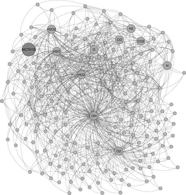Network generated with Gephi [33]. It represents the