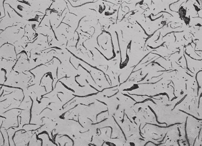 Examples graphite morphologies: a) Type I; b) Type VI; c