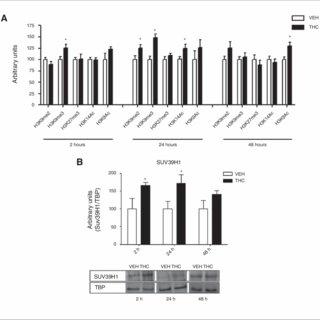 (PDF) Adolescent THC exposure in female rats leads to