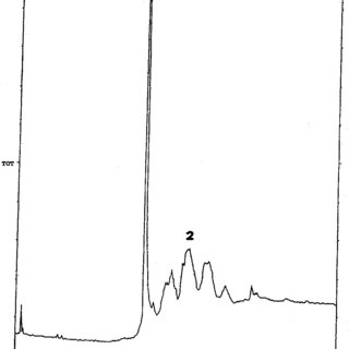 GC-MS chromatogram of CH2Cl2 extract