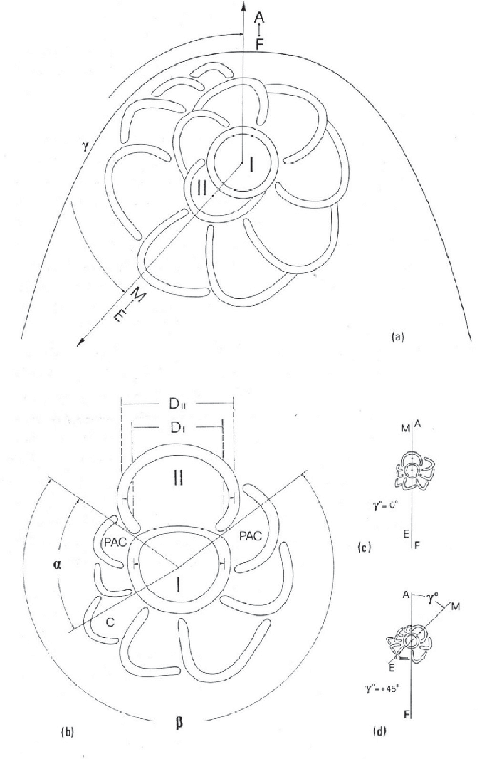 Schematic Drawing Meaning