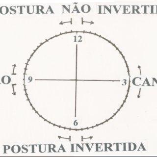(PDF) Desempenho na grafia e na direção grafológica em