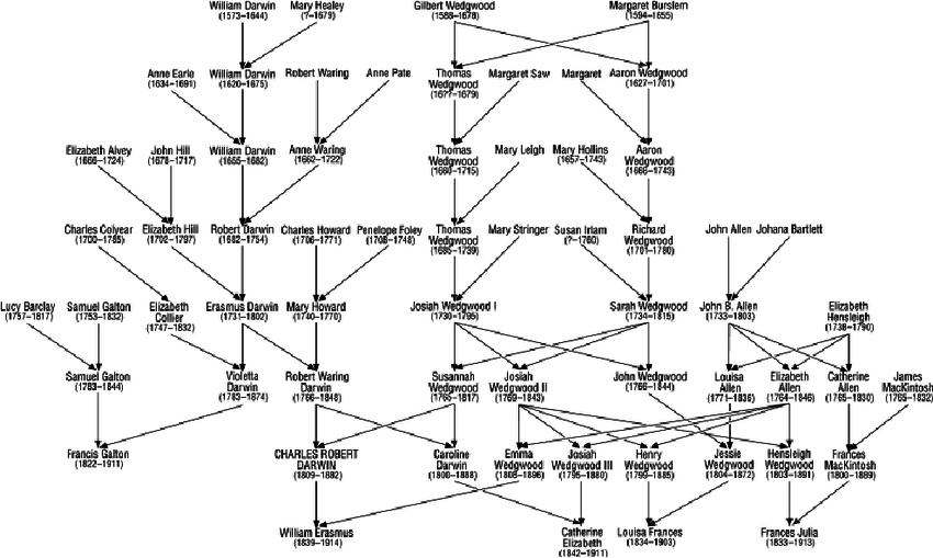 Pedigree of the Darwin/Wedgwood dynasty represented as