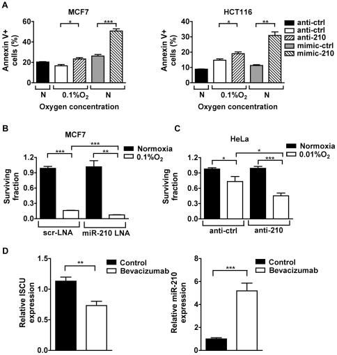 MicroRNA-210 Regulates Mitochondrial Free Radical Response