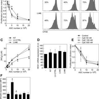 GARP expression on human ASCs. (A): Human ASCs and human