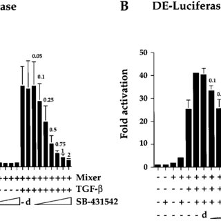 (PDF) SB-431542 Is a Potent and Specific Inhibitor of