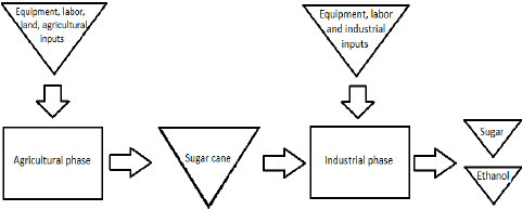 Flow of the production process of the sugarcane