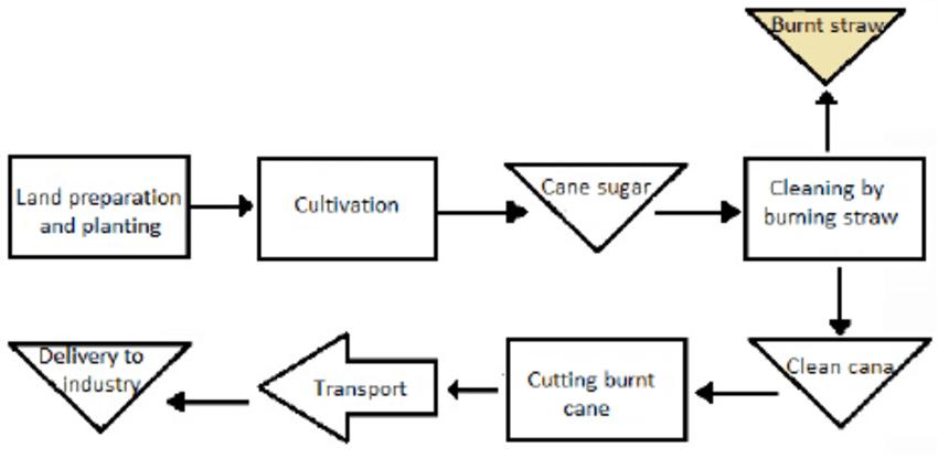 Operational Flow sugarcane farming.