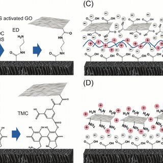 Different types of graphene-based antimicrobial