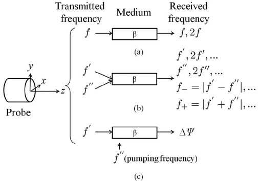 Schematic summary of the different approaches to determine
