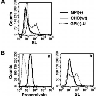 Aerolysin-resistant GPI(+) cells are not defective in GPI