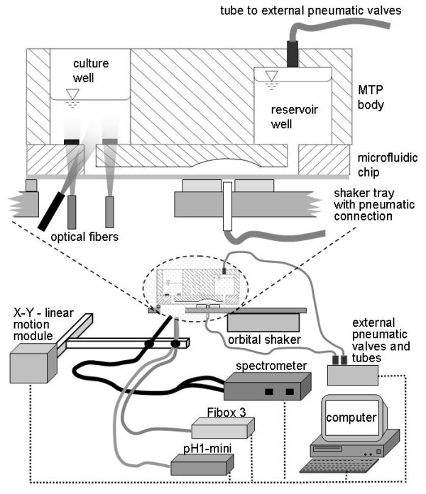 Microfluidic BioLector. The different parts of the