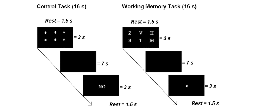 Examples of a control trial and a Sternberg Working Memory