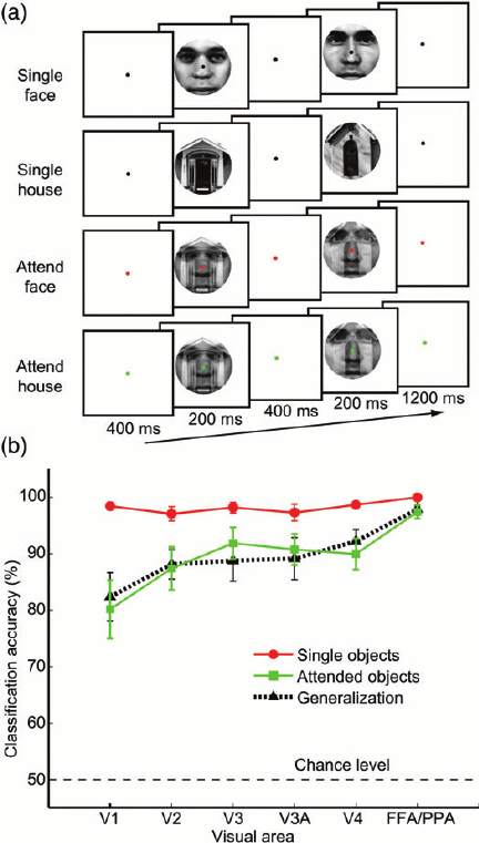 Experimental design and results of fMRI decoding. ( a