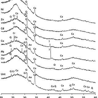 (PDF) Short-term effects of biochar on soil heavy metal